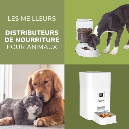 Comparatif complet des meilleurs distributeurs automatique de nourriture pour chat et chien - test produit