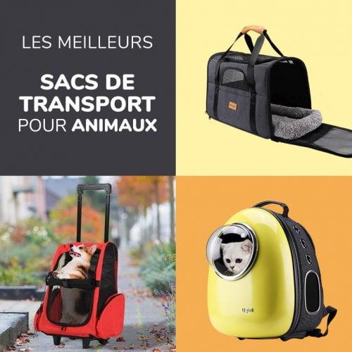 Test et comparatif des meilleurs sacs de transport pour chat et chien - Sac à dos ou à roulettes